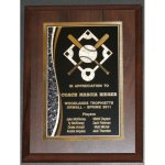 BASE Coach Plaque Coach